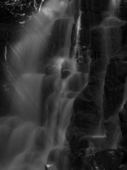 2011伊豆の滝004.jpg