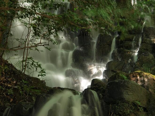 2011伊豆の滝005.jpg
