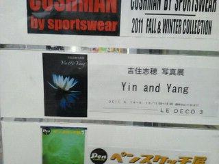yin&yang001.jpg