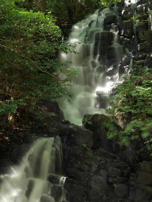 2011伊豆の滝002.jpg